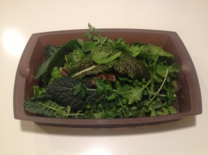 Today's salad harvest: mixed mesculin, green leaf, red romaine, nero kale, cilantro, parsley, chard