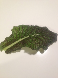 Hail! It's kale.