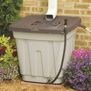 We have two of this type of rain barrel. Photo from http://www.suncast.com/productdisplay.aspx?id=534&pid=137